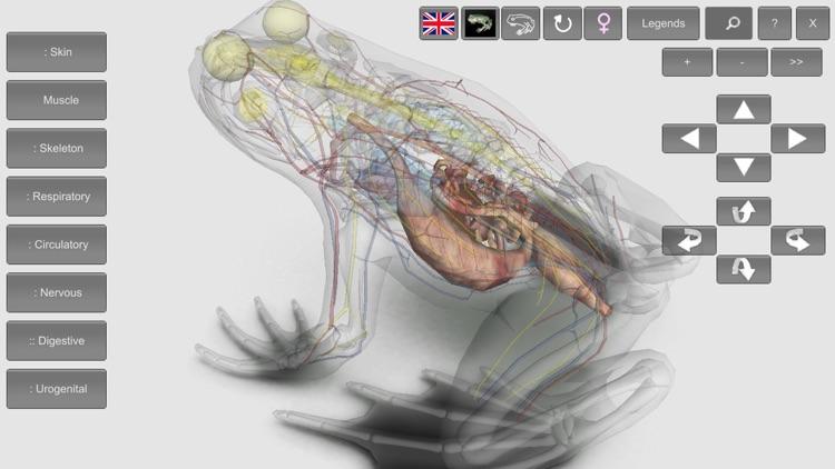 3D Frog Anatomy screenshot-4