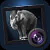 Dramatic Black & White - JixiPix Software
