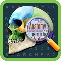 Codes for Anatomy Word Search- Medical Terms Game Hack