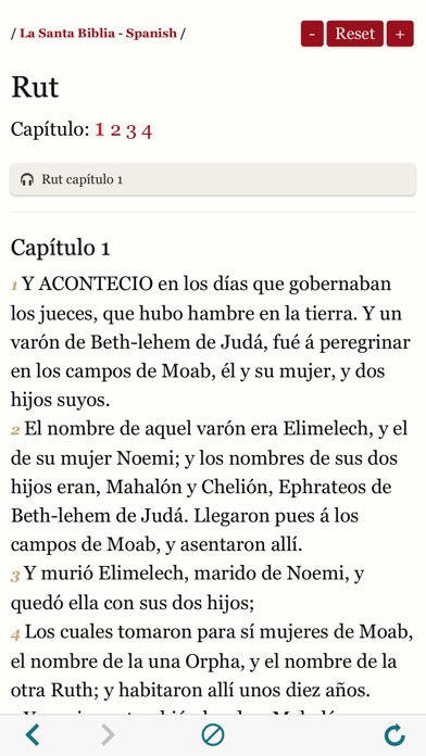 Spanish Bible : Easy to use Bible Audio book app screenshot three
