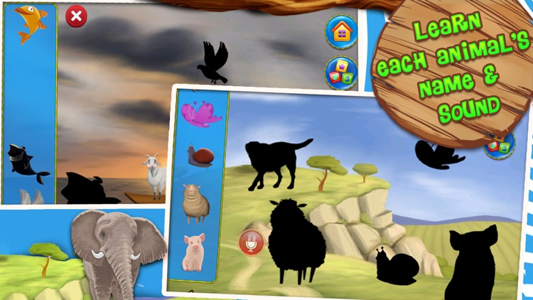 Zoo Animals Flash Cards screenshot-4