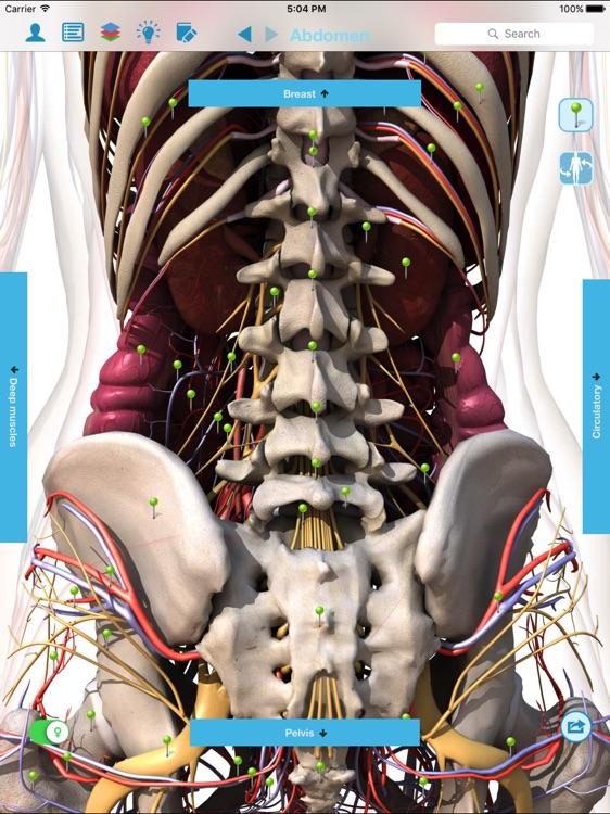 Anatomy & Physiology - anatomy of human body parts screenshot-4