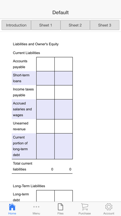 Balance Sheet Screenshots