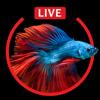 Aquarium Live HD Wallpapers for Lock Screen