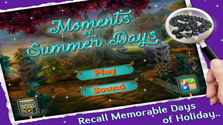 Moments of Summer Days - Find the Hidden Objects