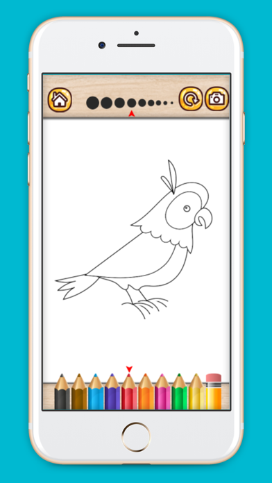 Bird coloring book drawing painting games for kids screenshot one