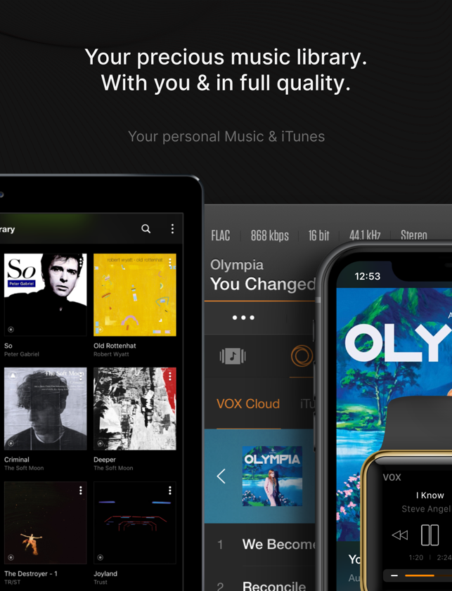 ‎VOX – MP3 & FLAC Music Player Screenshot