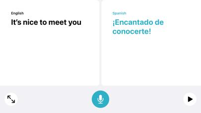 Translate screenshot 1