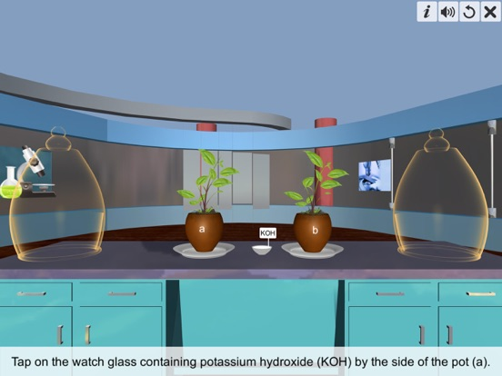 Carbon dioxide Photosynthesis screenshot 9