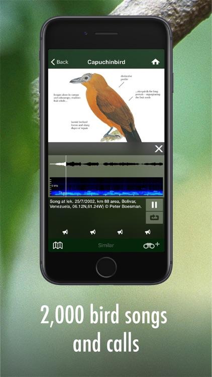 All Birds Guianas screenshot-3