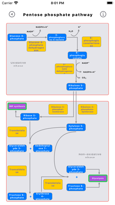 Скриншот №5 к Metabolic Organs