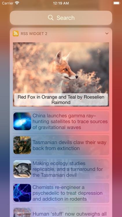 RSS Widget screenshot-4