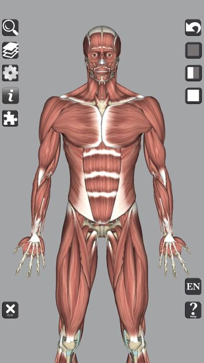 3D Anatomy Learning screenshot-3