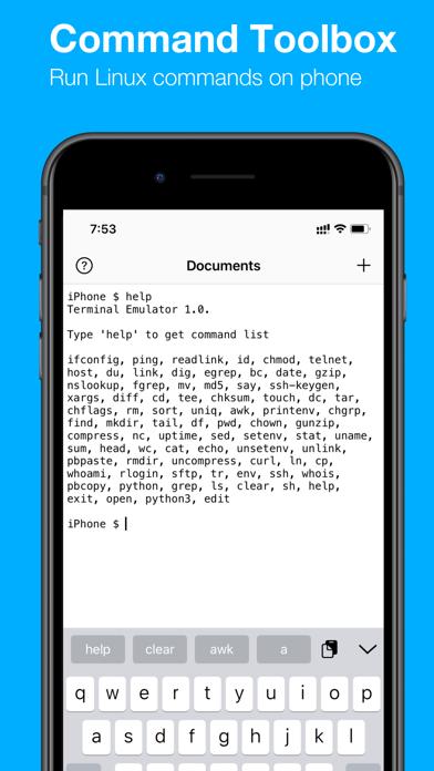 Terminal Emulator Screenshot