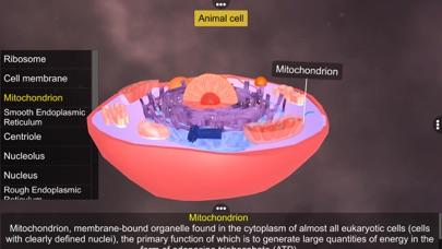 Prokaryotic & Eukaryotic cell screenshot 6