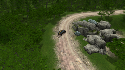 Go Rally screenshot 1