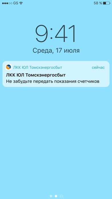 ЛКК ЮЛ ТомскэнергосбытСкриншоты 5