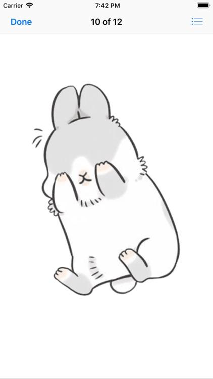 Machiko Rabbit Pack# 3