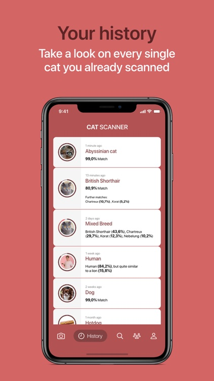 Cat Scanner screenshot-8