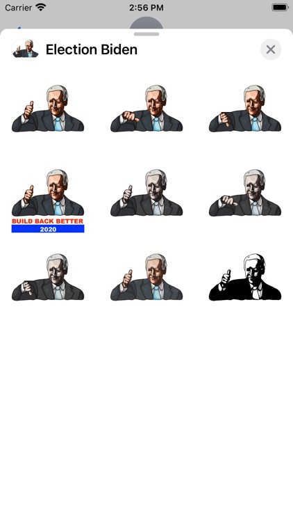Election Biden Pack