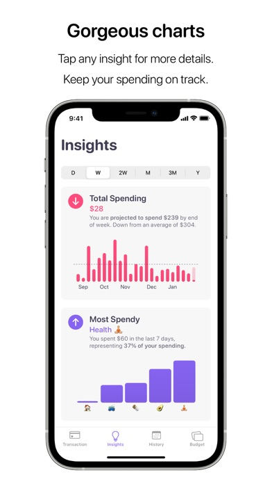 Nudget: Spending Tracker