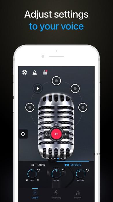 Pro Microphone Screenshot