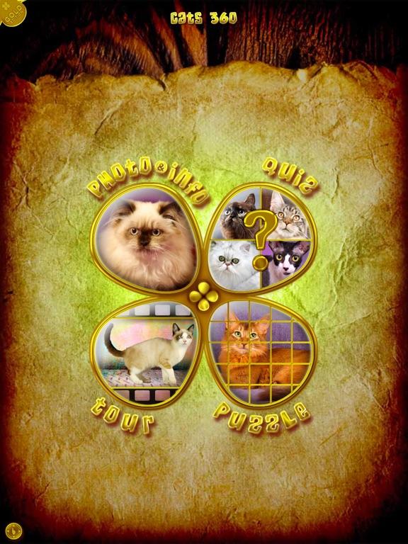 Cats 360 Gold screenshot 6