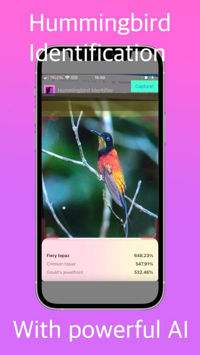 Hummingbird Identifier Screenshot