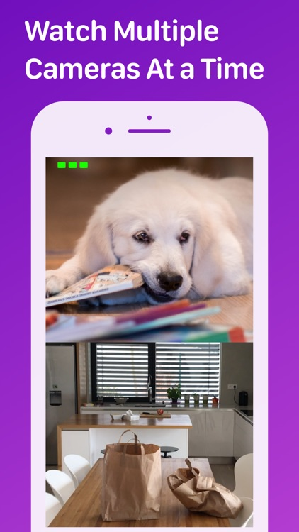 Pet Monitor VIGI screenshot-8