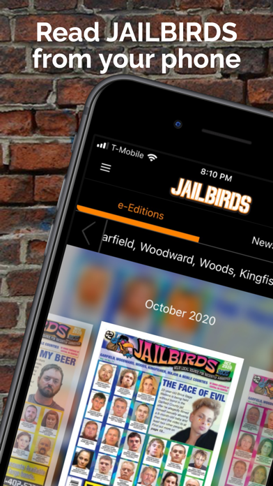 JAILBIRDS USA Screenshot