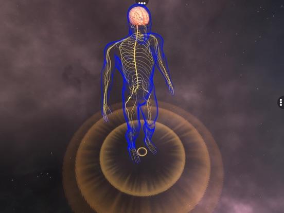 Human Nervous system screenshot 6