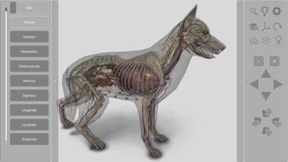3D Canine Anatomyのおすすめ画像3