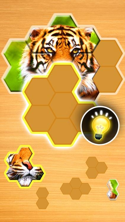 Jigsaw Puzzles Hexa Ⓞ