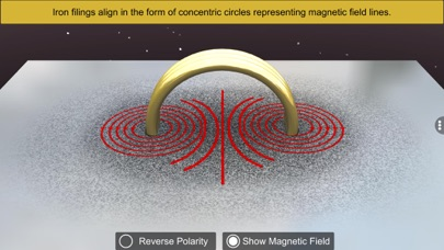 Magnetic Field And Current screenshot 9
