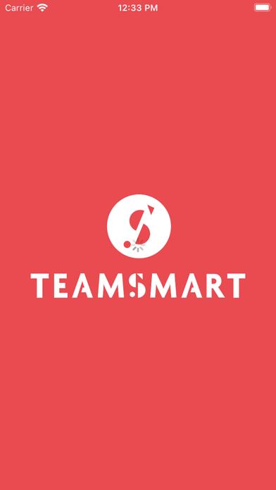 TEAMSMART 1