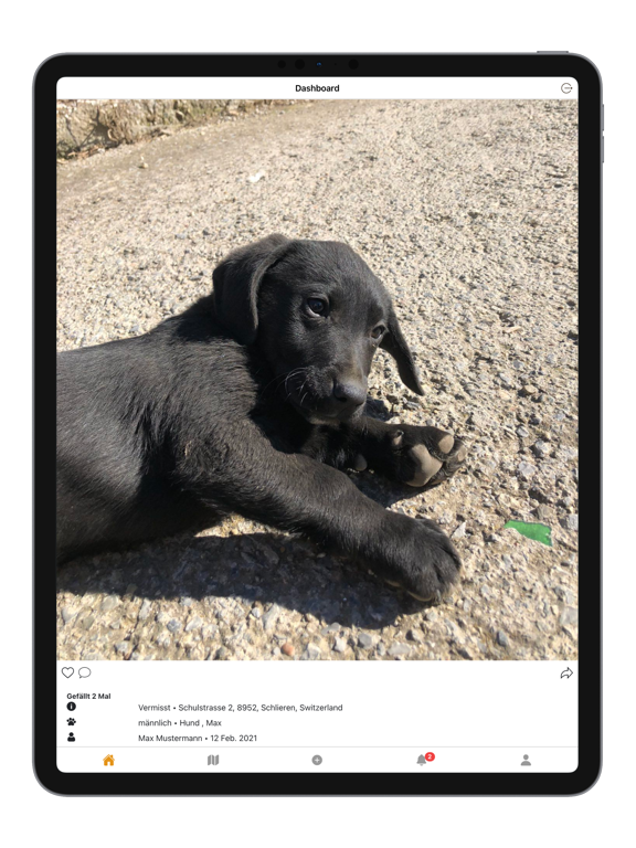 Animal Patrol screenshot 9