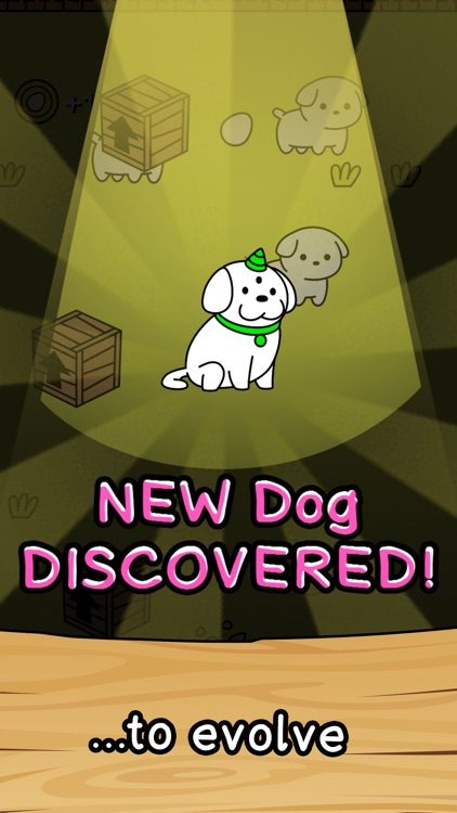 Dog Merge Evolution