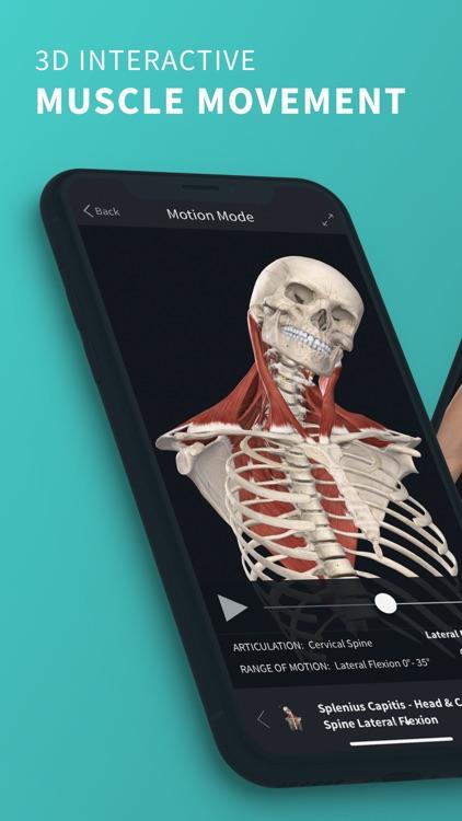 Complete Anatomy '21 screenshot-0