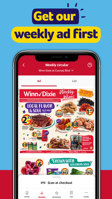 Winn-Dixie wiki review and how to guide