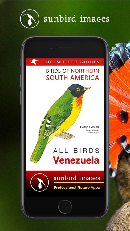 All Birds Venezuela - guide