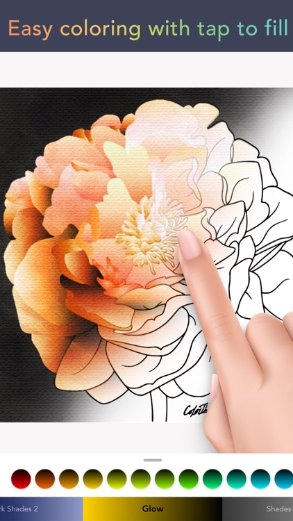 Color Therapy Coloring Number