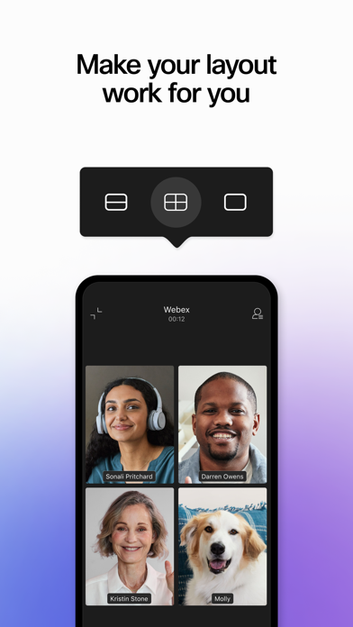 Webex wiki review and how to guide