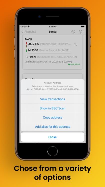 Binance Smart Chain Explorer screenshot-6