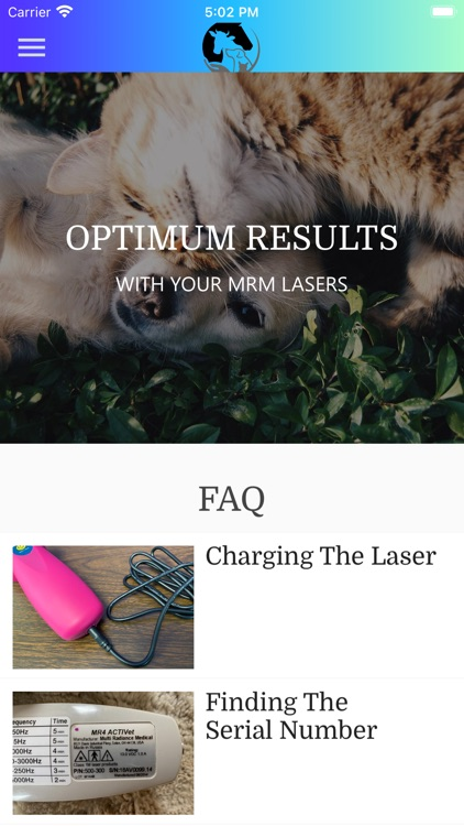 LASER THERAPY TIPS