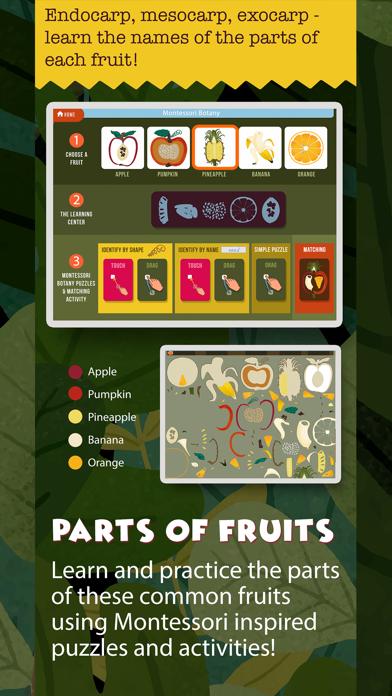 Montessori Science - School Ed screenshot 6