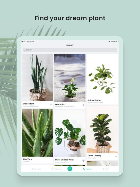 PlantIn: Plant Identifier screenshot 14