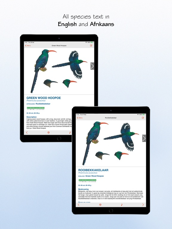 Sasol eBirds 5th Edition screenshot 13