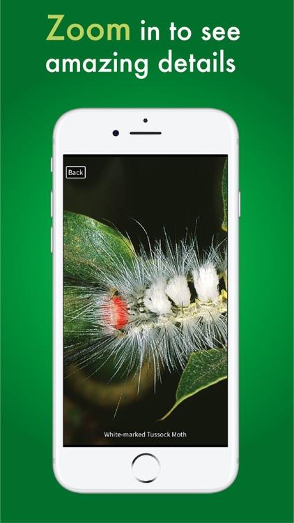 Caterpillar Id USA East Coast screenshot-9