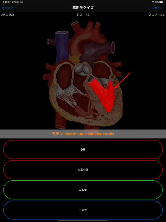 解剖学クイズのおすすめ画像4