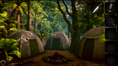 Mystery Of Camp Enigma II screenshot 1
